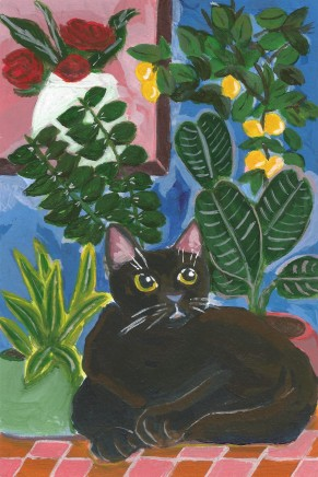 Black Cat and the Living Room Full of Plants