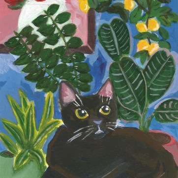 Project - Cats and Plants